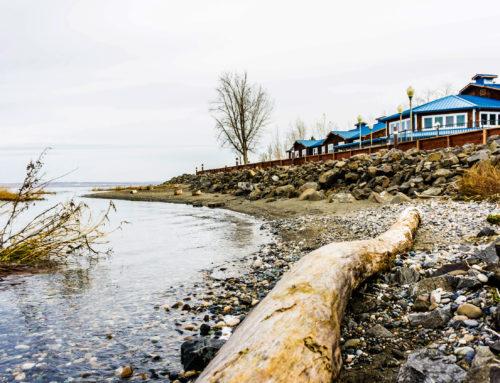 Hotel Spotlight: River Lodge & Grill
